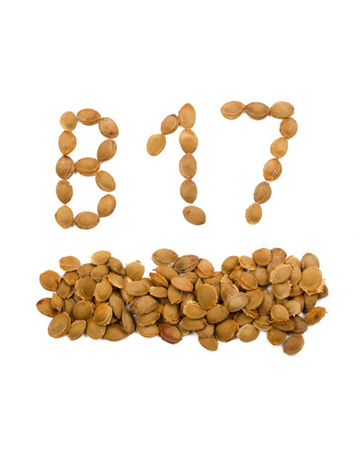 Vitamin B17 (Integrative medicine)