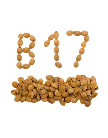 Витамин B17 (Integrative medicine)
