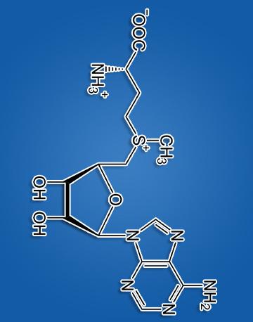S-Аденозилметионин