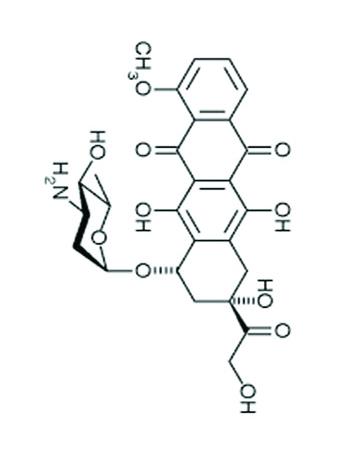 Епирубицин (Integrative medicine)